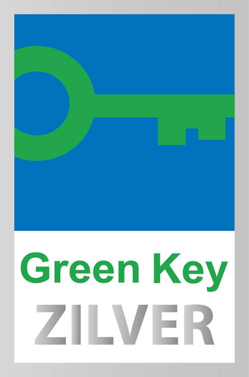 Greenkey zilver