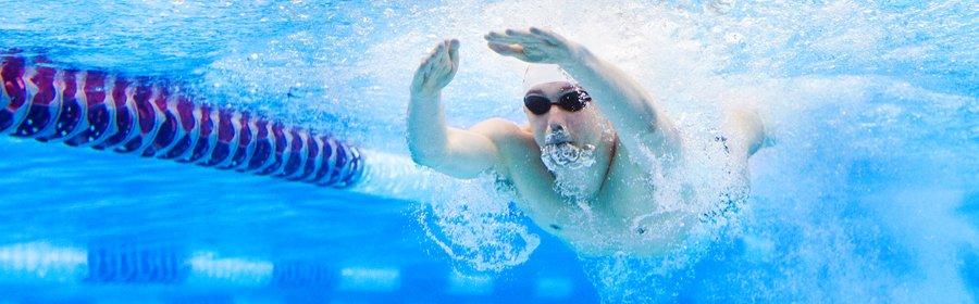Banenzwemmer onderwater 280x900 pix.jpg