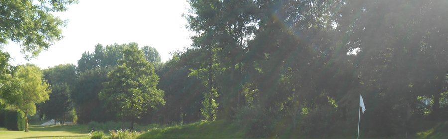 Golfbaan Het Wedde - hole 8 - websitebanner